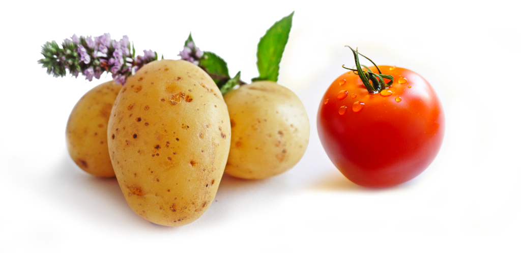 potatoes-3